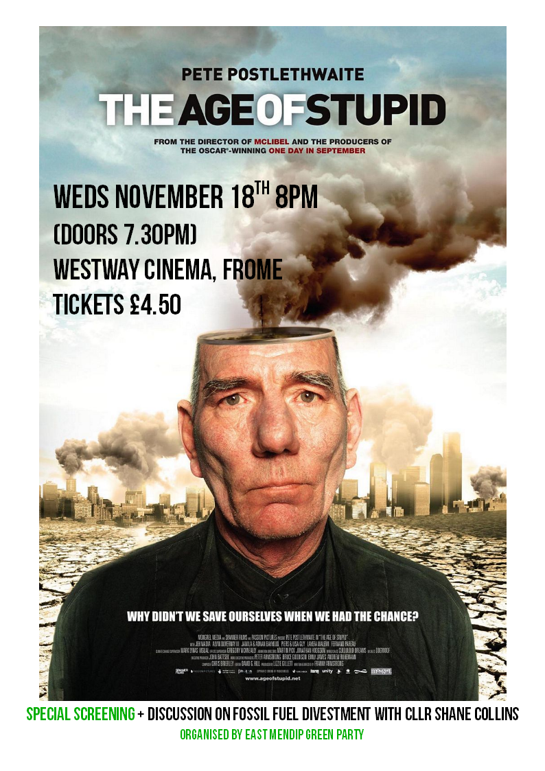 The Age Of Stupid